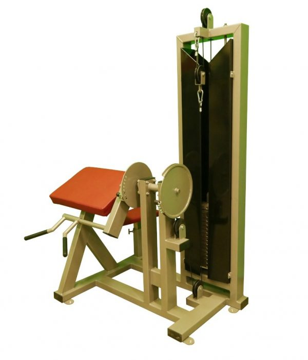 F3X Bicep Curl Machine