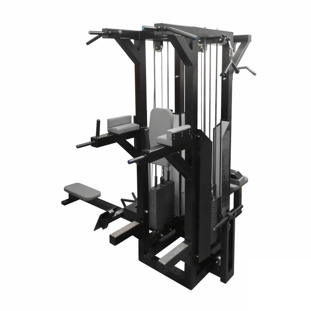 multistation-dips-lat-pulldown-low-row-M2