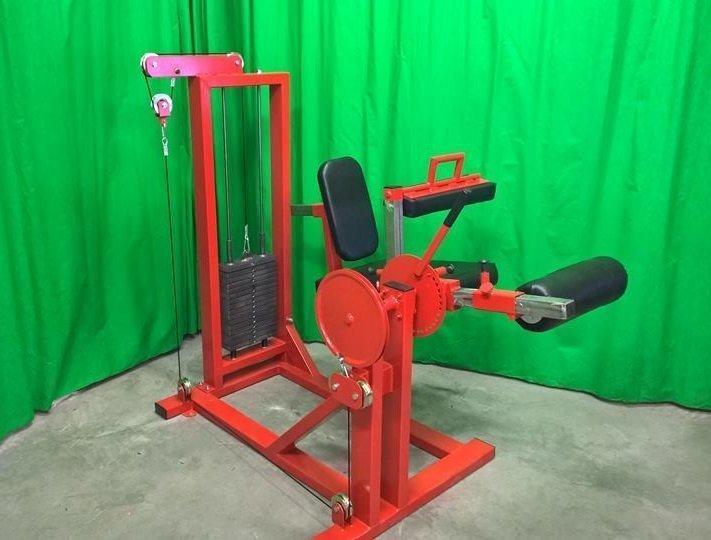 seated-leg-curl-leg-extension